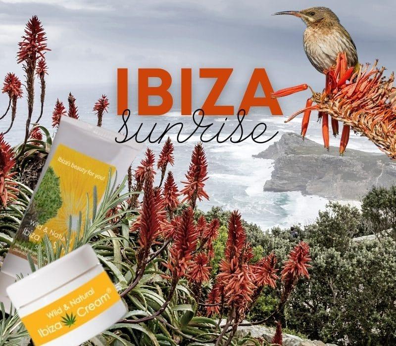 Wild & Natural Ibiza Cosmetics – Balearisches Pflanzengold von Aloe bis Rosmarin