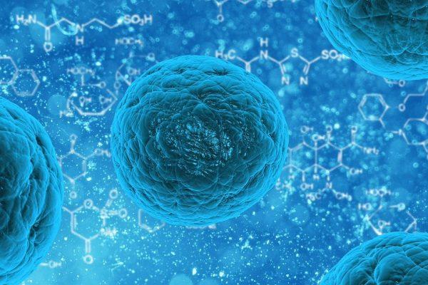 Neue wissenschaftliche Erkenntnisse aus der Bakterienforschung